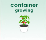 Container Growing